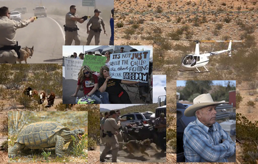 Images from the Cliven Bundy standoff.
