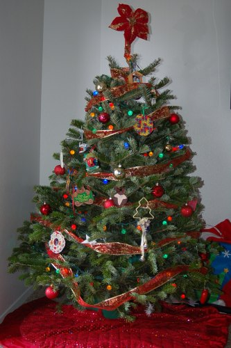 The tree we got last week is helping to make our Christmas more cheery in our new home. (Photo by John G. Miller)